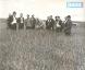 1960 г. Д.А.Кунаев, Н.И.Журин и Бектурганов в совхозе «Северный» Иргизского района.