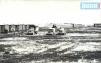 1954 год. Совхоз «Северный» Иргизского района.  В таких вагончиках жили первоцелинники.
