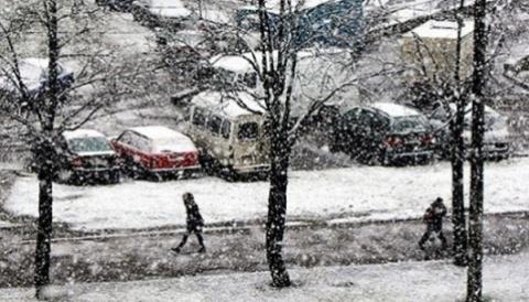 Погода алтайский край село баево