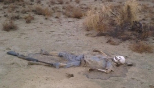 Полицейские отыскали скелет пропавшего встепи охотника (18+)